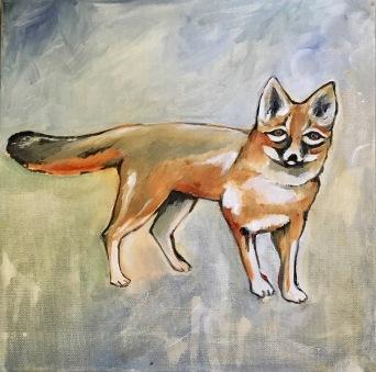 fox 11:2017